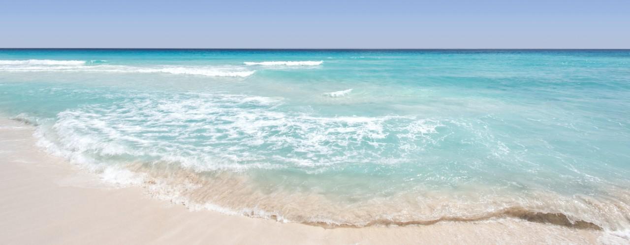 Ocean Isle Beach | Suzanne Polino REALTOR